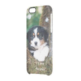 """""""Welpe in einem Baum"""" Foto 6/6s Durchsichtige iPhone 6/6S Hülle"""