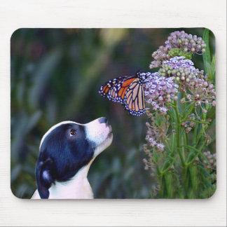 Welpe und Schmetterling Mousepad