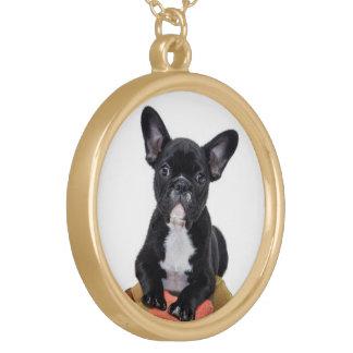 Welpen-Fotohalskette der französischen Bulldogge Vergoldete Kette