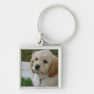 Welpen-Liebe - niedliches MaltiPoo HundeFoto Silberfarbener Quadratischer Schlüsselanhänger