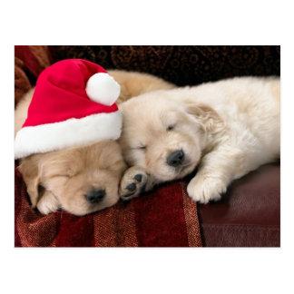 Welpen-Weihnachten Postkarten