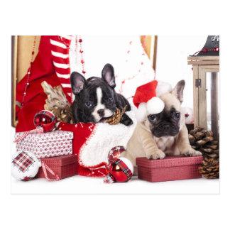 Welpen-Weihnachtsfranzösische Bulldogge Postkarte