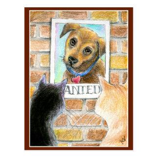 Welpenhunde- und -katzeniedliche Kunstpostkarte Postkarte