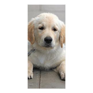 Welpenhundeniedliches Foto-Lesezeichen des Werbekarte