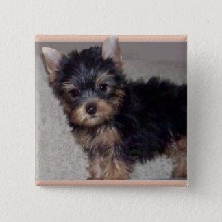 Welpenknopf Yorkshires Terrier Quadratischer Button 5,1 Cm