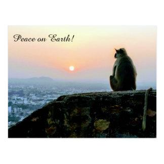 Weltfrieden-Affe in Indien an der Postkarte