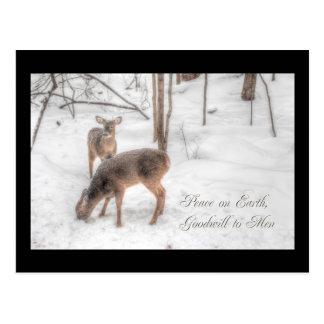 Weltfrieden - zwei Rotwild in Snowy-Holz Postkarte