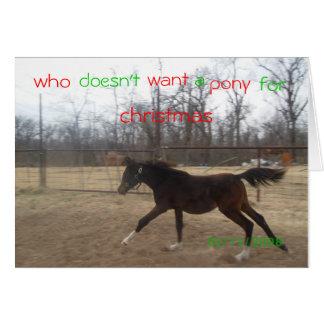 wem, nicht tut, wollen, a, Pony, Grußkarte