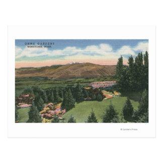 Wenatchee, WashingtonView von Ohme arbeitet # 2 im Postkarte