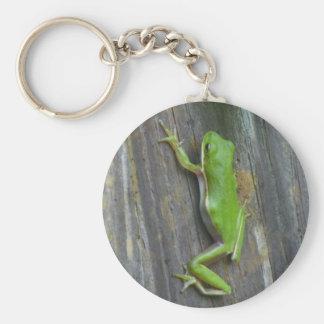 Wenig Froggy Schlüsselanhänger