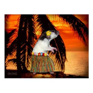 Wenig Hula Honig-Postkarte Postkarte