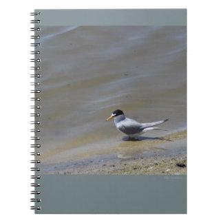 Wenig Seeschwalben-gewundenes Notizbuch Notizblock