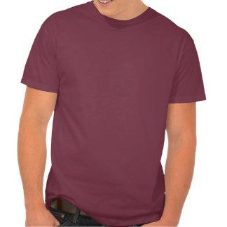 Wenn Gott homosexuelle Leute hasst, warum er uns T-shirt
