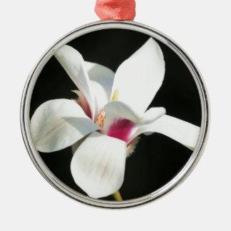 Werden Silbernes Ornament