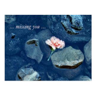 Werfen Sie weg die vermisste Single-Gartennelke Postkarte