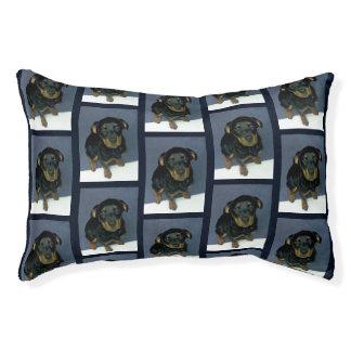Wertvoller Rottweiler Welpen-kleines Hundebett Haustierbett