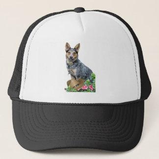 Western-australisches Vieh-Hundekleid u. Truckerkappe