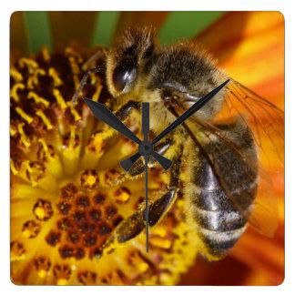 Western-Honig-Bienen-MakroFoto Wanduhr