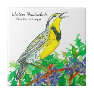 Western Meadowlark Singvogel-Oregon-Traube Keramikfliese