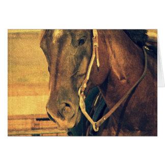 Western-Pferd, Geburtstag Karte