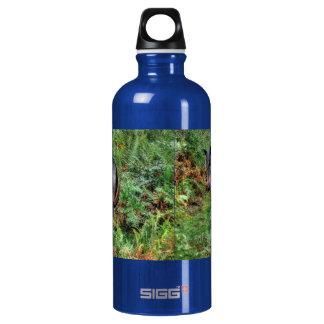 Western-Pferdc$pferdeartig-liebhaber Tier Wasserflasche