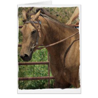 Western-Wildleder-Pferd Karte