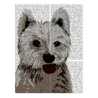 Westhochland-Terrier-Ebene Postkarte