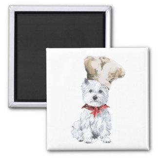 Westhochland-weißer Terrier-Koch Quadratischer Magnet