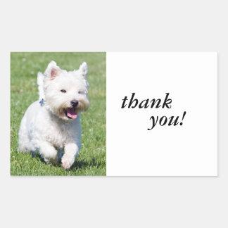 Westhochland-weißer Terrier, westie Hundeniedliche Rechtecksticker