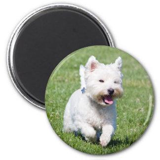 Westhochland-weißer Terrier, westie Runder Magnet 5,7 Cm