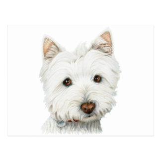 Westhochland-weißes Terrier-Hund Postkarten