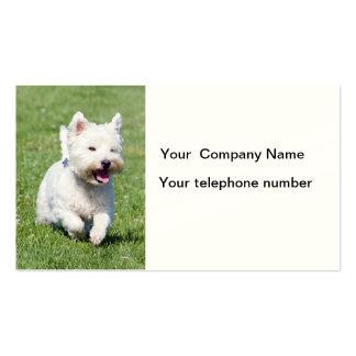 Westhochland-weißes Terrier-HundeVisitenkarten Visitenkartenvorlage