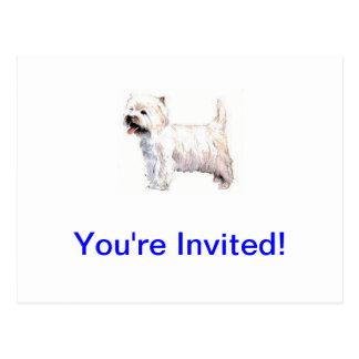 Westhochland weißes Terrier Westie Postkarten