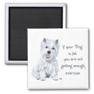 Westie Klugheit - fetter Hund? Quadratischer Magnet