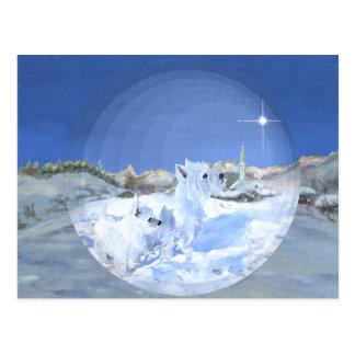 Westies im Schnee Postkarte