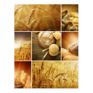 Wheat.Harvest Konzepte. Getreidecollage Postkarte