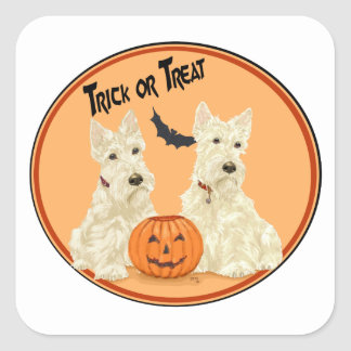 Wheaten schottische Terrier Halloween Quadratischer Aufkleber