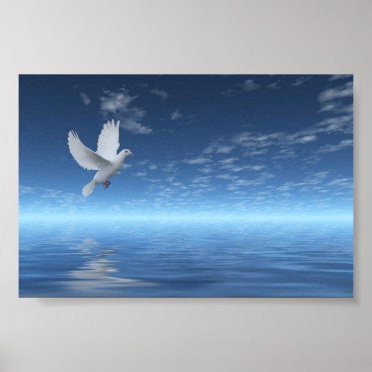White Dove Poster