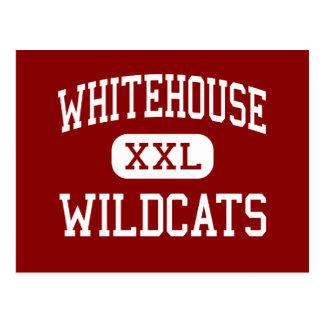 Whitehouse - Wildkatzen - Jüngeres - Whitehouse Postkarte