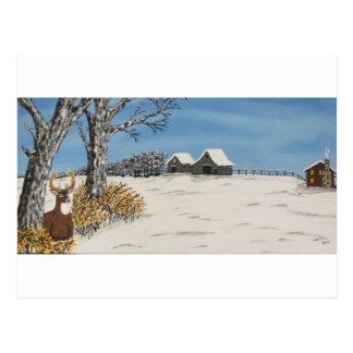 Whitetail-Ausblick Postkarte