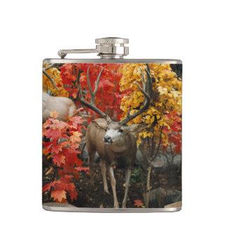 Whitetail im Herbst Flachmann