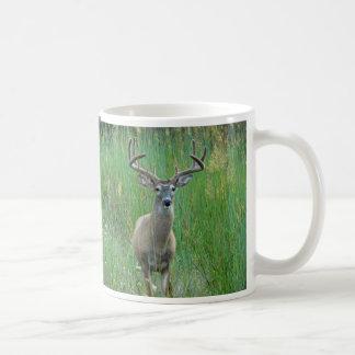 Whitetail-Rotwild in der Wiesen-Tasse Kaffeetasse