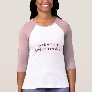 Wie dieses ist, was ein Feminist aussieht T-Shirt
