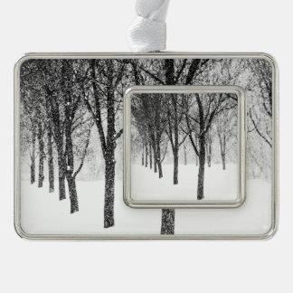 wie ich mit Bäumen mit Seiten versehe Rahmen-Ornament Silber