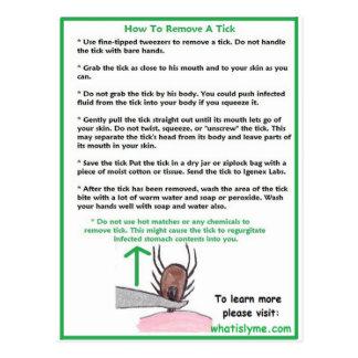 Wie man eine Ticken-Anweisungskarten für Lyme Postkarte