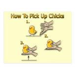 Wie man Küken-lustige Richtungen aufhebt Postkarten