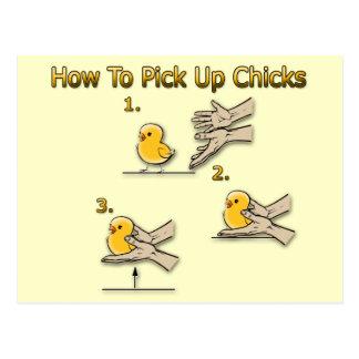 Wie man Küken-lustige Richtungen aufhebt Postkarte
