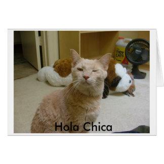 Wie Sie doin? , Hola Chica Karte