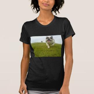 Wiederverwendung von der WIEDERVERWENDUNGS-Linie T Shirt