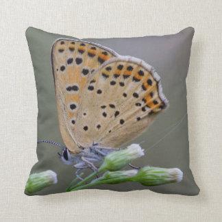 Wiese träumt Schmetterling #1 Kissen
